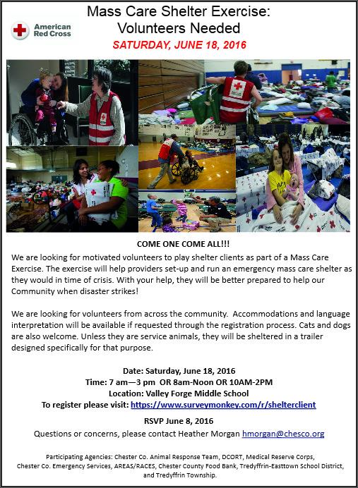 mass care volunteers