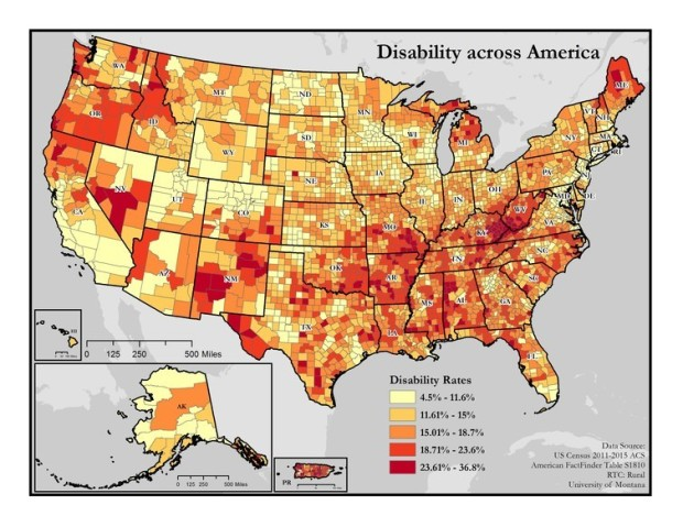 disability divide