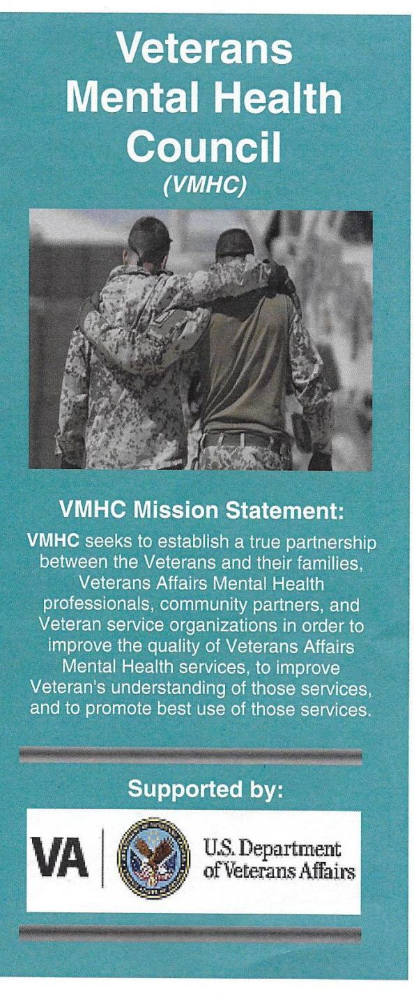 VA mental health council