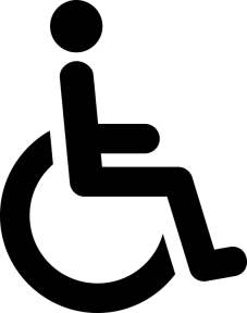disa - mobility